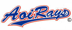 愛知県名古屋市少年野球クラブ 葵レイズの公式ホームページ